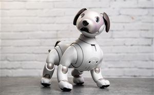 ♥️♥️♥️ Chú chó Aibo giờ đã biết mừng rỡ khi chủ trở về nhà